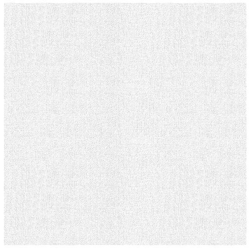Бумага карточная тисненая Лилия Холдинг Холст 62х94 см 200 г, Россия  - купить со скидкой