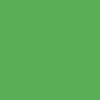 Маркер спиртовой GRAPH'IT Brush двусторонний цв. 8150 Зеленый хлорофилл фото