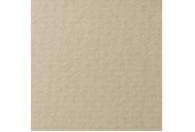 Купить Бумага для пастели Lana COLOURS 50x65 см 160 г жемчужный, Франция