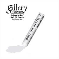 Пастель масляная профессиональная Mungyo, цвет № 249 Себряный серый фото
