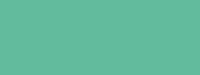 Купить Маркер художественный Сонет TWIN Мятно-зеленый, Россия