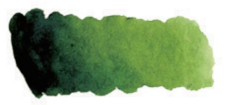 Купить Акварель Mijello Mission Silver Pan 331 Травяной зеленый, Южная Корея