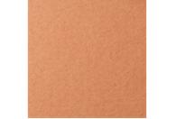 Купить Бумага для пастели Lana COLOURS 50x65 см 160 г охра, Франция