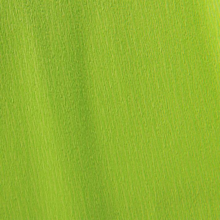 Купить Бумага крепированная Canson рулон 50х250 см 32 г №19 Ярко-салатовый, Франция