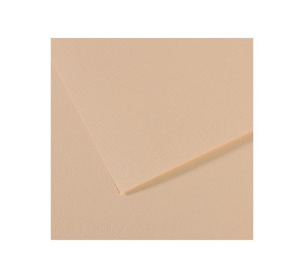 Купить Бумага для пастели Canson MI-TEINTES 50x65 см 160 г №112 скорлупа, Франция