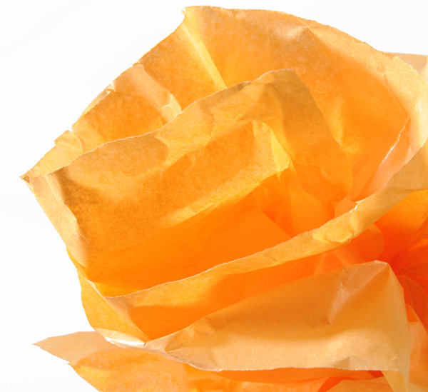 Купить Бумага шелковая Canson рулон 0, 5х5 м Оранжевый, Франция