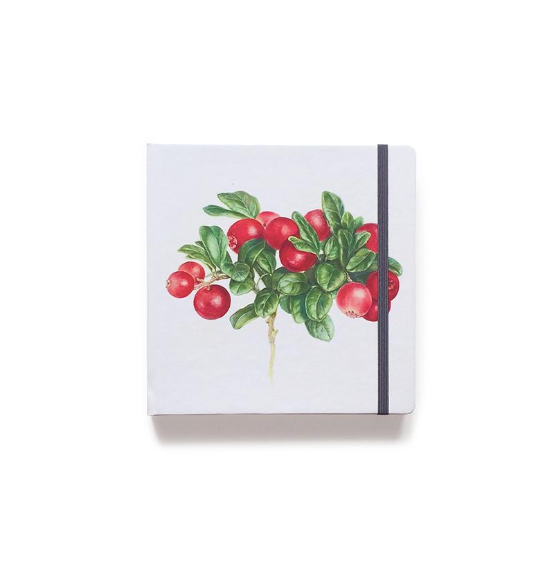 Купить Скетчбук акварельный Брусника 20х20 см 32 л 250 г хлопок 100%, Sketch Story, Россия