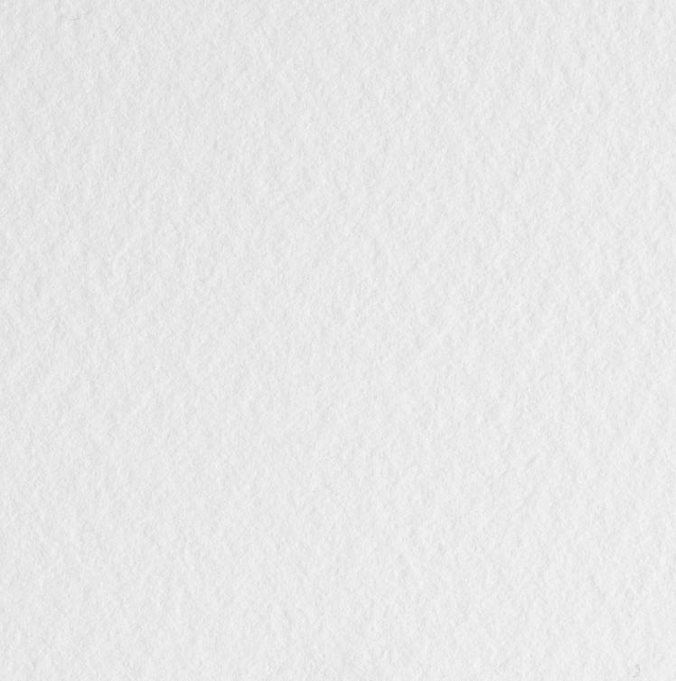 Купить Бумага для акварели Белые ночи 50х65 см 260 г, хлопок до 70%, среднее зерно, Невская Палитра, Китай
