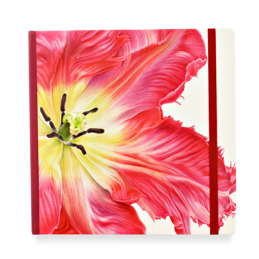 Купить Скетчбук акварельный Тюльпан 20х20 см 32 л хлопок 100%, Sketch Story, Россия