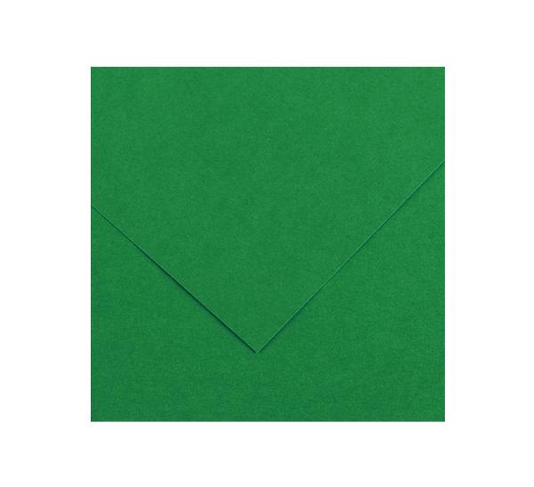 Купить Бумага тонированная Canson Iris Vivaldi 50х65 см 240 г №30 зеленый мох, Франция