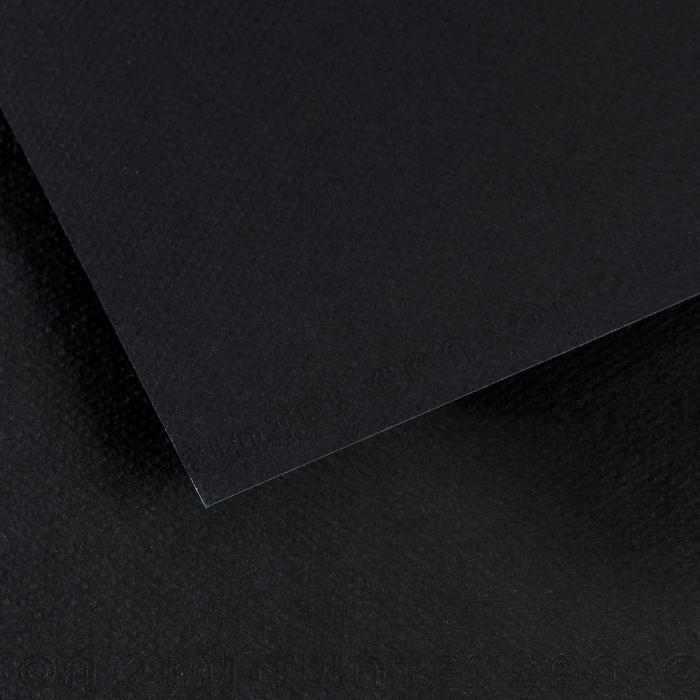Купить Бумага для пастели Canson MI-TEINTES 75x110 см 160 г №425 черный, Франция