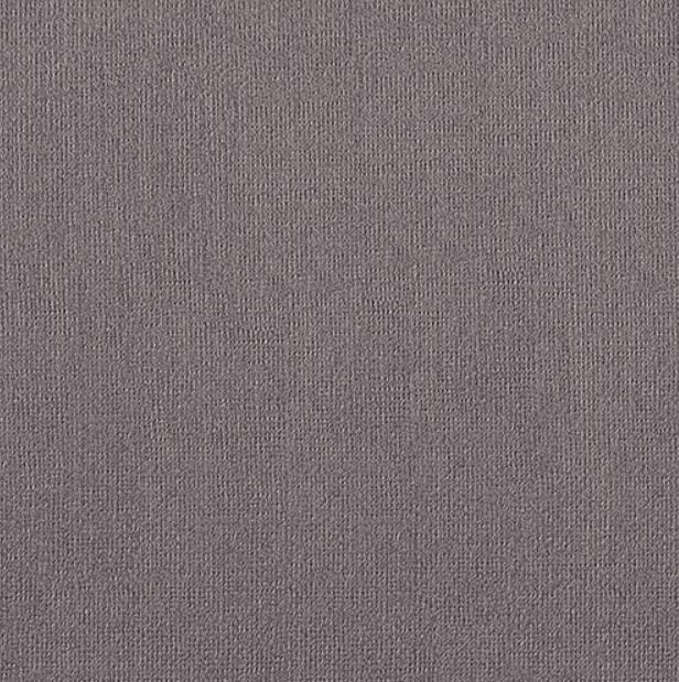Купить Бумага для пастели Палаццо 70x100 см 160 г коричневая, Лилия Холдинг, Россия