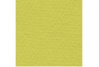 Купить Бумага для пастели Lana COLOURS 50x65 см 160 г фисташковый, Франция