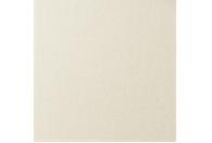 Купить Бумага для пастели Lana COLOURS 50x65 см 160 г слоновая кость, Франция
