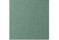 Купить Бумага для пастели Lana COLOURS 50x65 см 160 г полынь, Франция