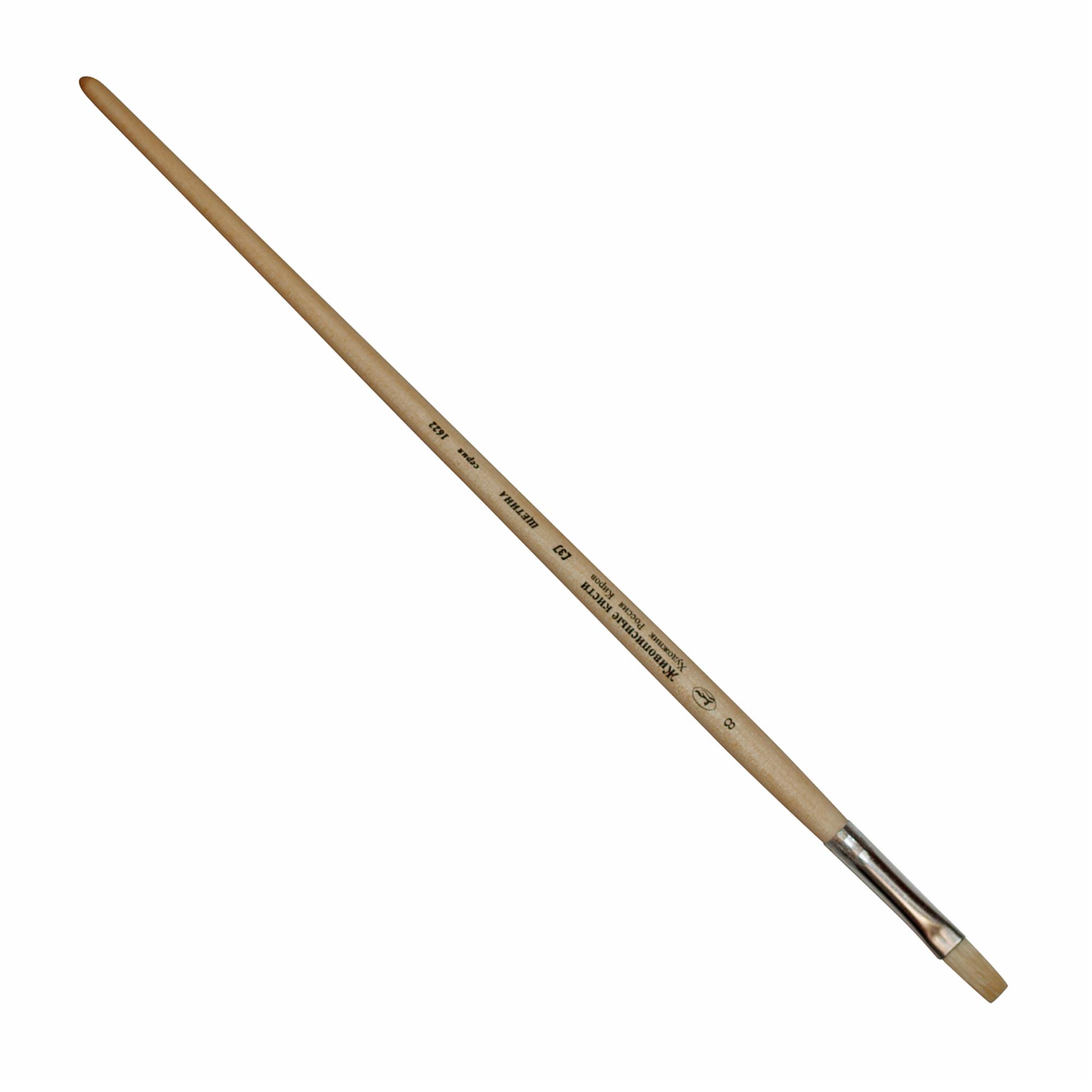 Купить Кисть щетина №14 плоская Живописные кисти 1622 длинная ручка п/лак, Россия