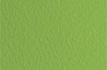 Бумага для пастели Fabriano Tiziano 50x65 см 160 г №14 зеленый мох.