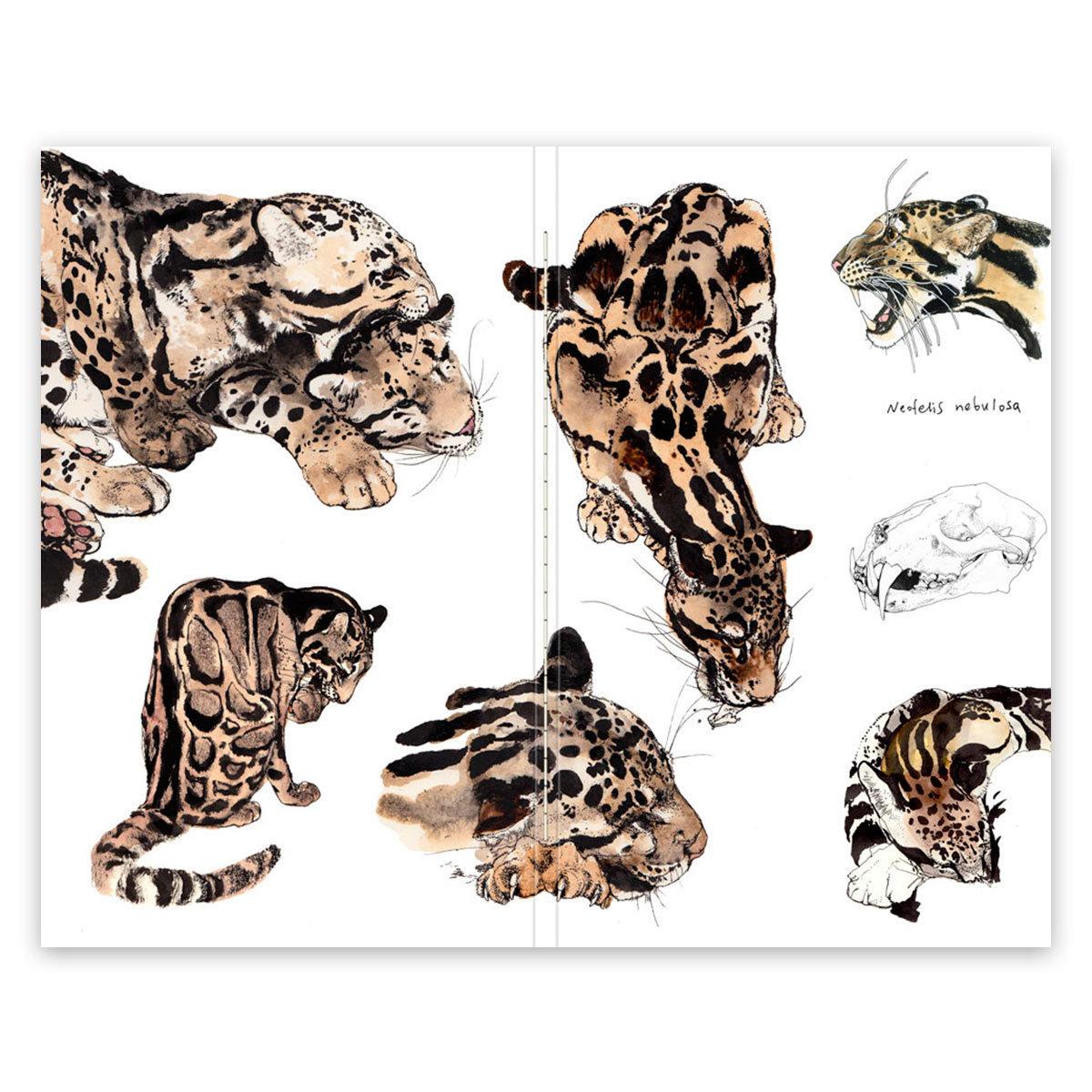 Купить Скетчбук Maxgoodz CLassic Fox and Owl Дымчатый леопард А5, 32 л, 120 г, Россия