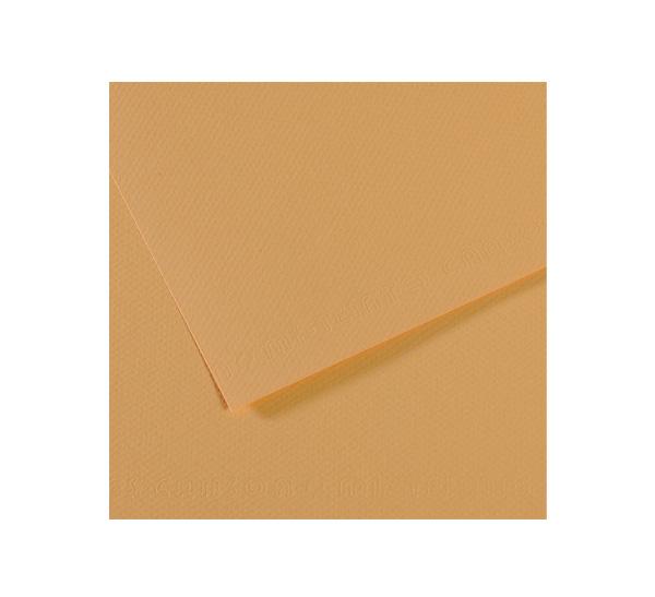 Купить Бумага для пастели Canson MI-TEINTES 75x110 см 160 г №336 табачный, Франция