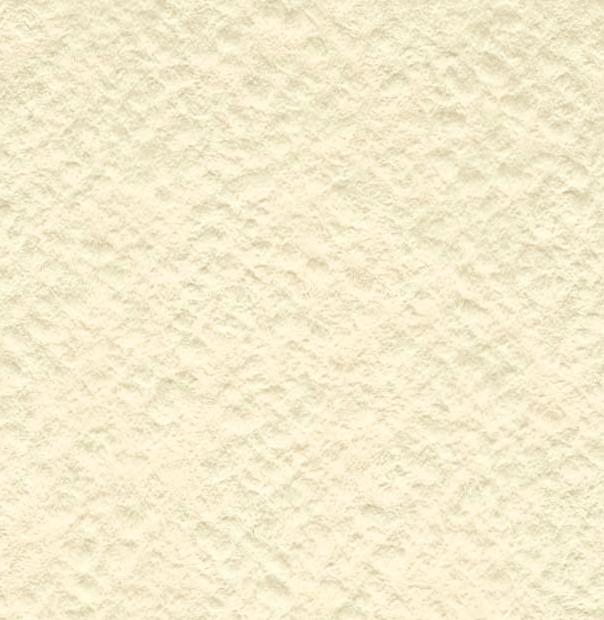 Купить Бумага для акварели Лилия Холдинг лист 200 г Слоновая кость А1, Россия