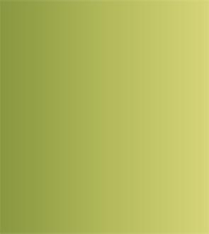 Купить со скидкой Акварель ShinHanart PWC extra fine 15 мл №561 Зеленая земля желтый оттенок