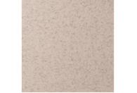 Купить Бумага для пастели Lana COLOURS 50x65 см 160 г лунный камень, Франция