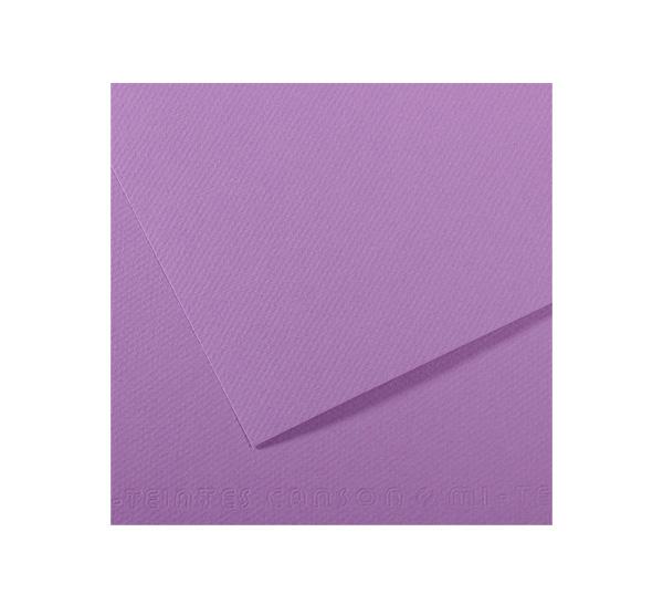 Купить Бумага для пастели Canson MI-TEINTES 75x110 см 160 г №113 черника, Франция