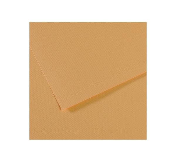 Купить Бумага для пастели Canson MI-TEINTES 75x110 см 160 г №340 конопляный, Франция