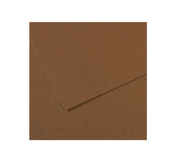 Купить Бумага для пастели Canson MI-TEINTES 75x110 см 160 г №133 сепия, Франция