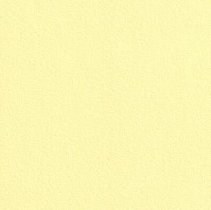 Купить Бумага для пастели Hahnemuhle Velour 50x70 см, 1л, 260 г цвет желтый, HAHNEMUHLE FINEART, Германия