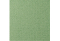 Купить Бумага для пастели Lana COLOURS 50x65 см 160 г зеленый сок, Франция