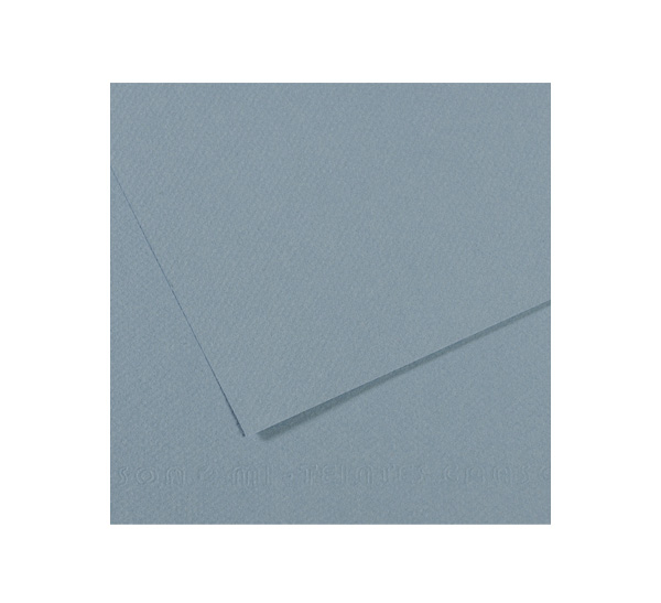 Купить Бумага для пастели Canson MI-TEINTES 50x65 см 160 г №490 светло-голубой, Франция