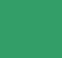 Маркер спиртовой ZIG Kurecolour кисть+тонкое перо, цвет Зеленый фото