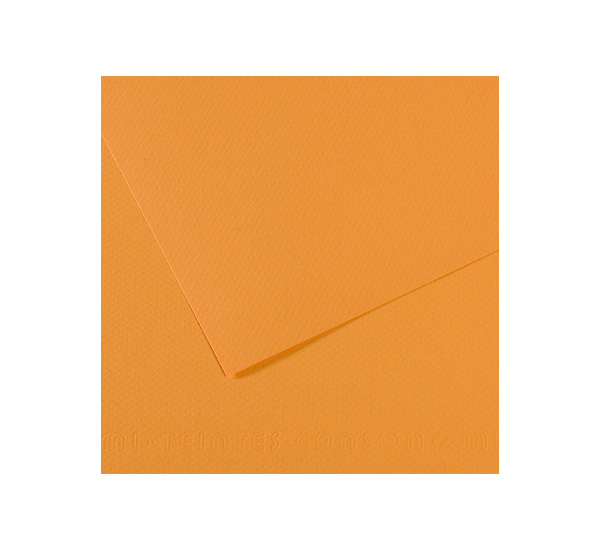 Купить Бумага для пастели Canson MI-TEINTES 75x110 см 160 г №374 пеньковый, Франция