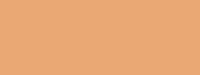 Купить Маркер художественный Сонет TWIN Светло-коричневый, Россия