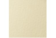 Купить Бумага для пастели Lana COLOURS 50x65 см 160 г кремовый, Франция