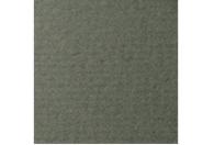 Купить Бумага для пастели Lana COLOURS 50x65 см 160 г виридоновый зеленый, Франция