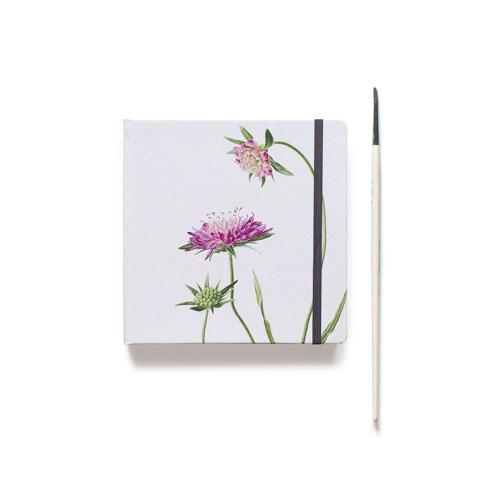 Купить Скетчбук акварельный Короставник 20х20 см 32 л 100% хлопок 250 г, Sketch Story, Россия