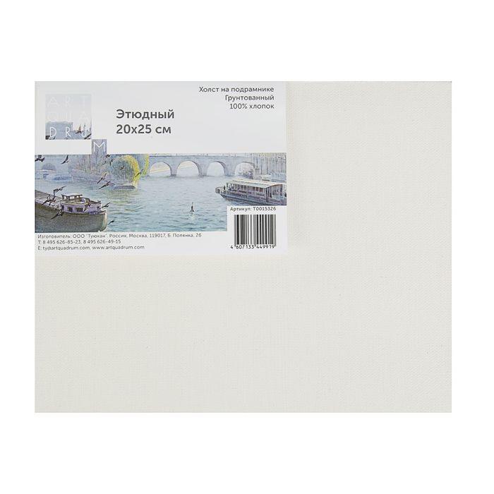 Купить Холст на подрамнике грунтованный Туюкан этюдный 60x80 см, Россия