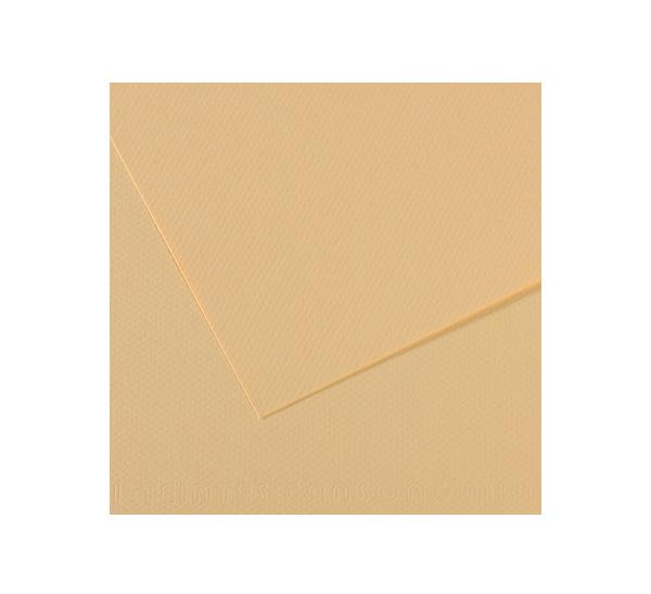 Купить Бумага для пастели Canson MI-TEINTES 75x110 см 160 г №407 кремовый, Франция