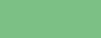 Купить Маркер художественный Сонет TWIN Ярко-зеленый, Россия