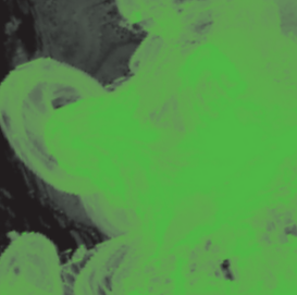 """Чернила перламутровые Daler-Rowney """"FW ARTISTS"""" 29,5 мл Зеленый ара"""