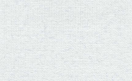 Купить Бумага для пастели Палаццо 50x70 см 160 г белый лед, Лилия Холдинг, Россия