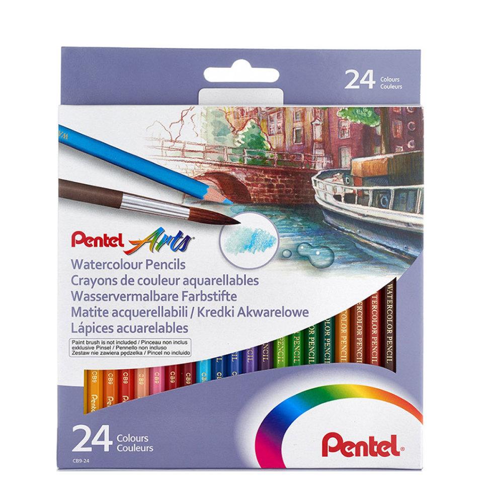 Купить Набор карандашей акварельных Pentel Colour pencils 24 цв, в картонной коробке, Япония