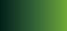 Акварель ShinHanart PRO Water Color 12 мл №416 Травяной зеленый фото