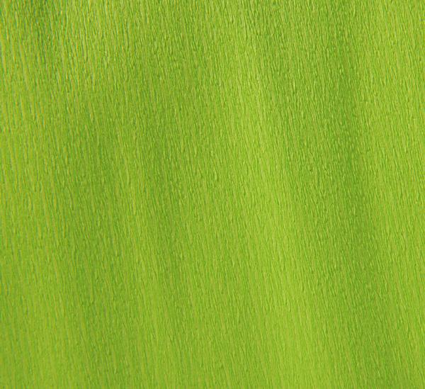 Купить Бумага крепированная Canson рулон 50х250 см 48 г Ярко-салатовый, Франция
