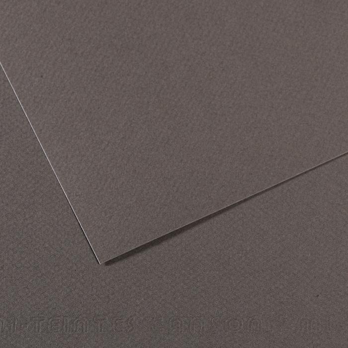Купить Бумага для пастели Canson MI-TEINTES 75x110 см 160 г №345 шифер, Франция