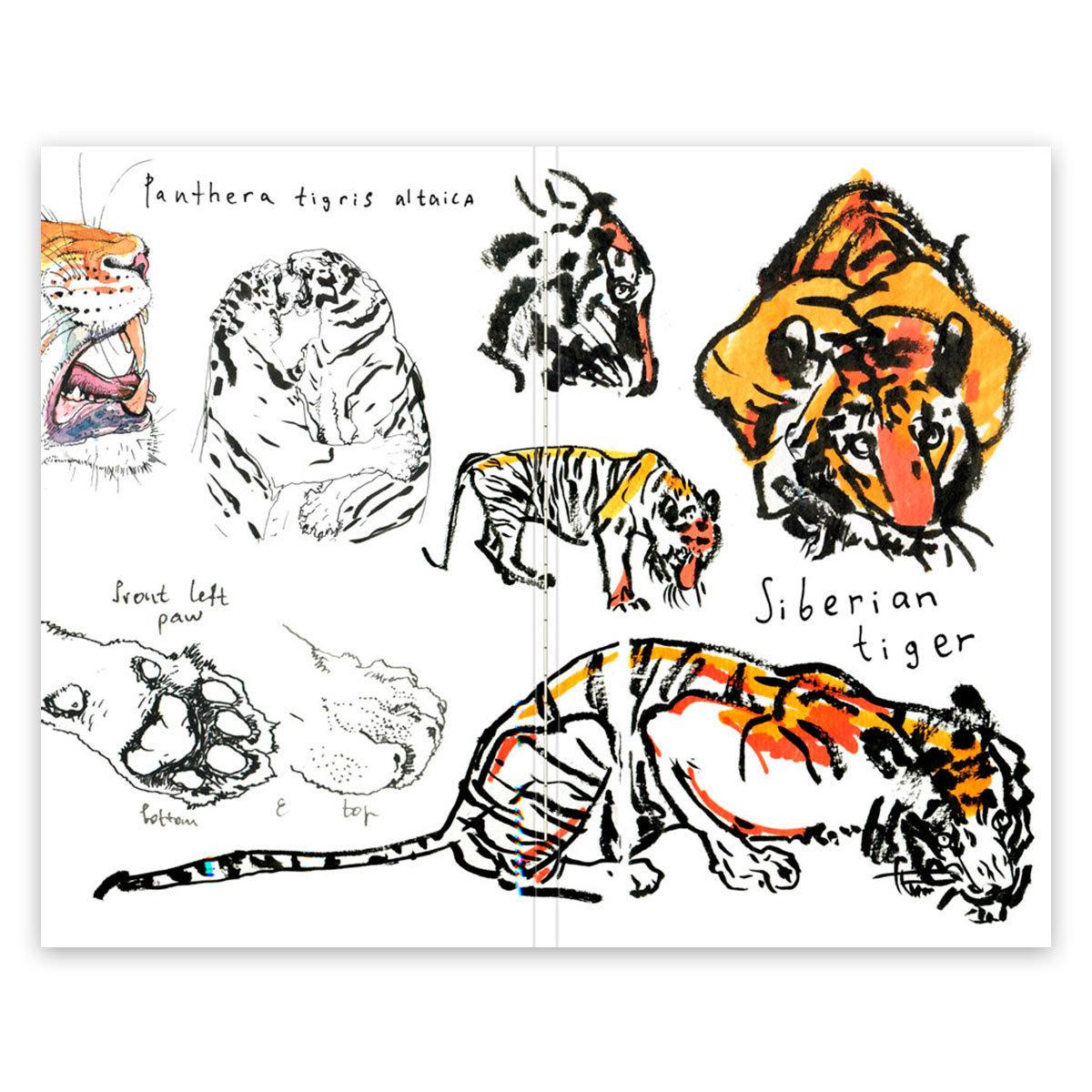 Купить Скетчбук Maxgoodz CLassic Fox and Owl Амурский тигр А5, 32 л, 120 г, Россия