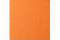 Купить Бумага для пастели Lana COLOURS 50x65 см 160 г оранжевый, Франция