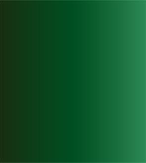 Купить Акварель ShinHanart PWC extra fine 15 мл №570 Кадмий зеленый темный, ShinHan Art International Inc., Южная Корея
